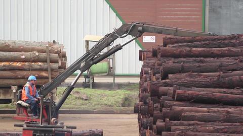 Worker manning crane moving logs Footage