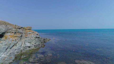 Rocks algae and the sea Footage