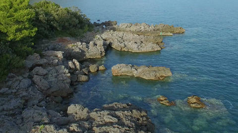 Sea coast line with stones, green bushes and transparent sea water Filmmaterial