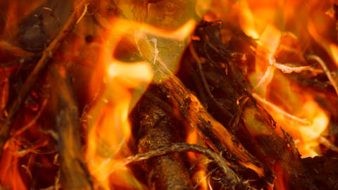 Close Up Fire Burns Everything Stock Video Footage