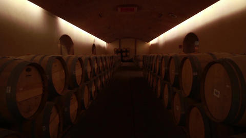 Wine cellar Footage