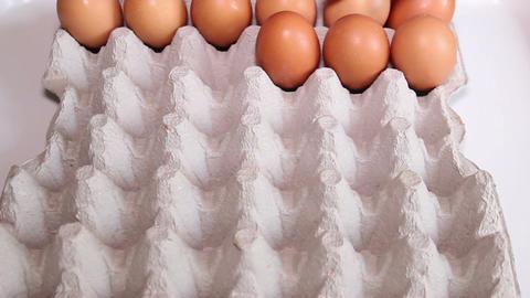 Worker Sorting Fresh Eggs 2 Footage