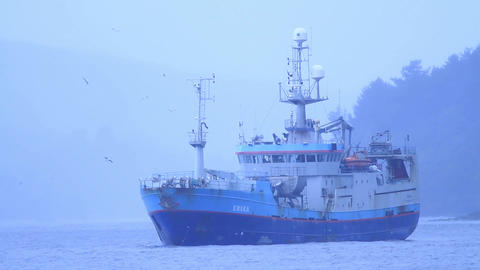 Fishing boat at bay Footage