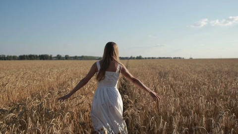 Carefree woman running through golden wheat field Live Action