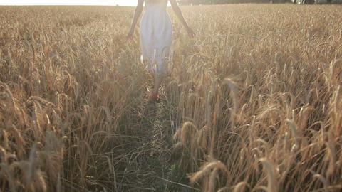 Elegant woman enjoying nature in sunset light Footage