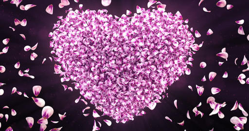 Falling Pink Rose Sakura Flower Petals In Lovely Heart Shape Background Loop 4k Animation