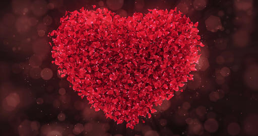 Red Rose Flower Petals In Lovely Heart Shape Background Loop 4k Animation