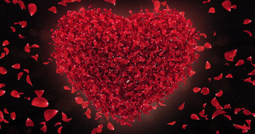 Red Rose Falling Flower Petals In Lovely Heart Shape Background Loop 4k Animation