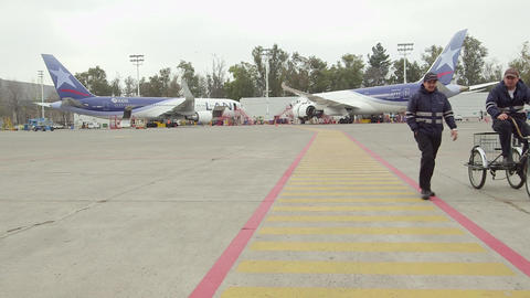 Airport runway with planes and workers Live Action