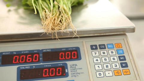 Workers Weighing Organic Vegetable on Scales ビデオ