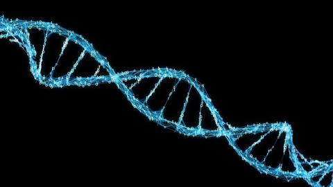 Motion Background Digital Binary Plexus DNA molecule Alpha Matte 4k Loop CG動画素材