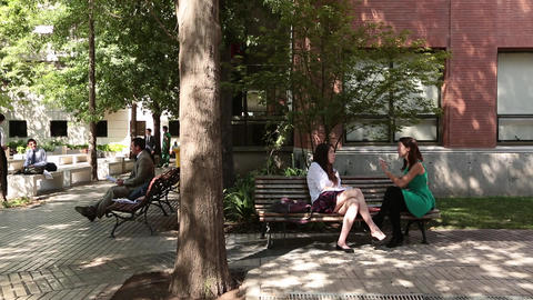 Talking on campus bench Footage