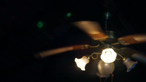 Ceiling Fan with Light Bulbs Live Action