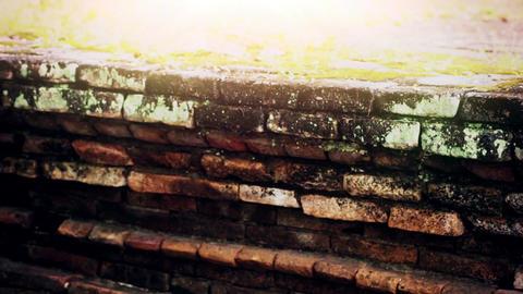 An Ancient Brick Wall ビデオ