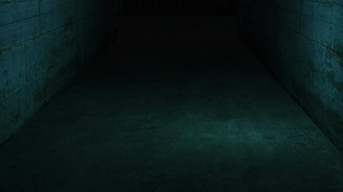 walking in spooky and scary with low light dirty interior…, Stock Animation