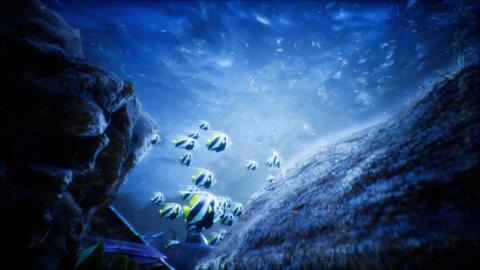 Under Water World 2 Animation