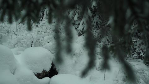 Path in the Snow Mountain Bridge 4K Footage