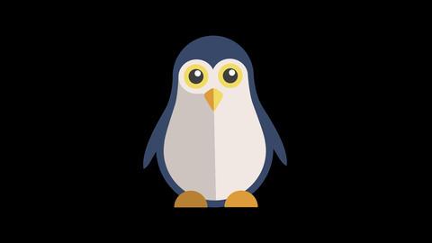 Animated Penguin Icon Animation