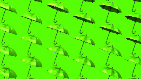 Green Umbrellas On Green Background Animation