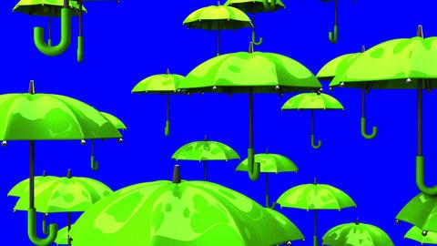Rising Green Umbrellas On Blue Chroma Key Animation