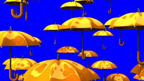 Rising Orange Umbrellas On Blue Chroma Key Animation