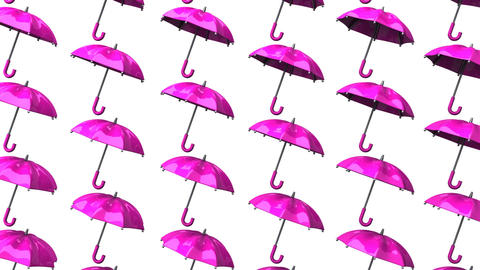 Pink Umbrellas On White Background Animation