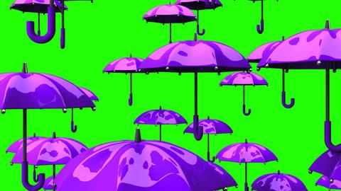 Rising Purple Umbrellas On Green Chroma Key Animation