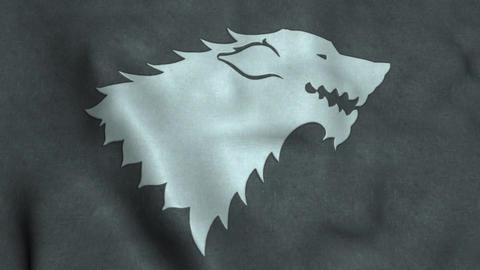House Stark Flag Waving Animation