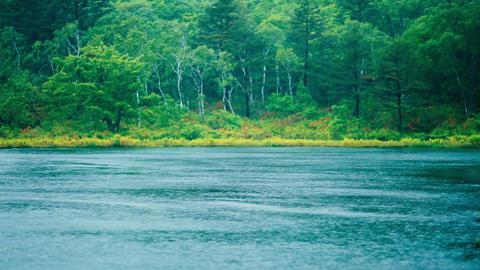 Lake on a rainy day Footage