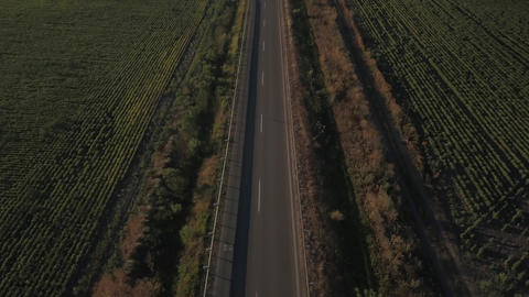 Aerial Flight over the road between fields. Aerial drone footage 4k Image