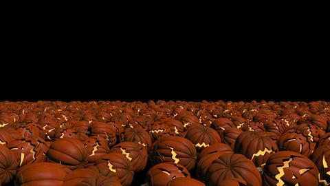 Pumpkins for halloween Filmmaterial