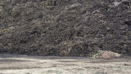 Pile of manure in the countryside. Heap of dung in field on the farm. Fertilizer Footage