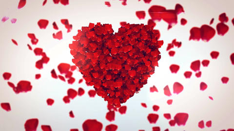 Petals of red roses in the form of heart Animation