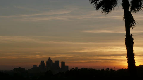 Downtown Los Angeles sunset time lapse and a palm tree shot from East LA Footage
