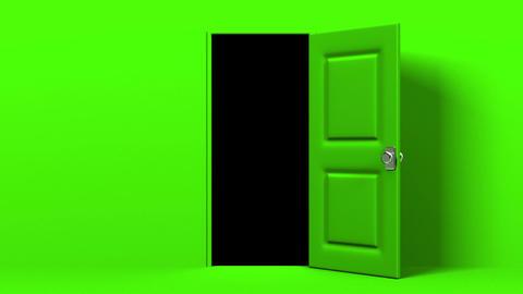 Green Door And Dark Room Animation