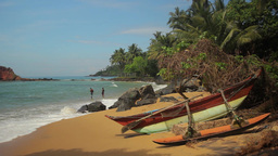 The tropical landscape. Shore of a tropical island . Sri Lanka. Mirissa Footage