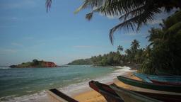 The Tropical Landscape. Shore Of The Island. Sri Lanka. Mirissa stock footage