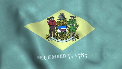 Delaware State Flag Image