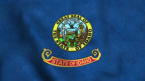 Idaho State Flag Image