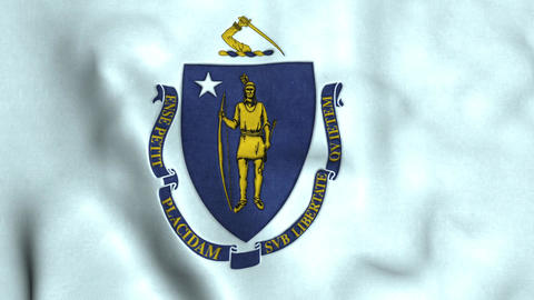 Massachusetts State Flag Image