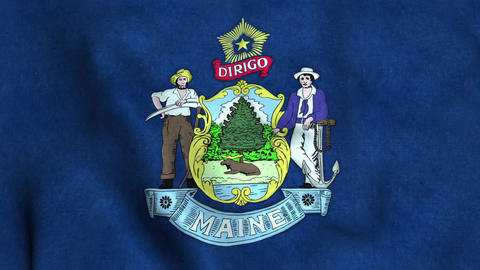 Maine State Flag 画像