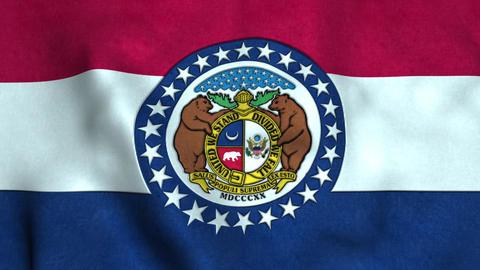 Missouri State Flag Image