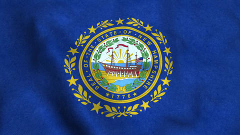 New hampshire State Flag Image