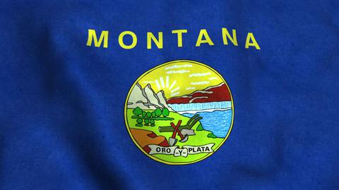 Montana State Flag Image