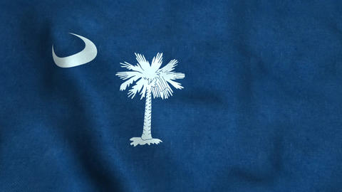 South Carolina State Flag Image