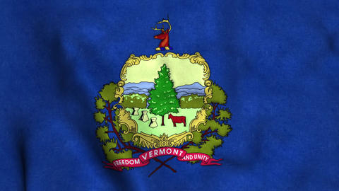 Vermont State Flag Image