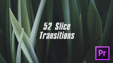 Slice Transitions Premiere Proテンプレート