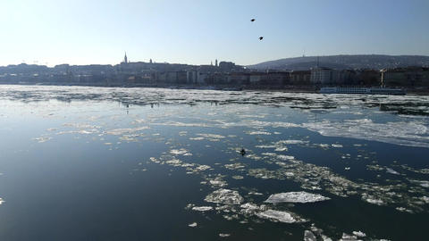 Ice flow on the Danube river Image