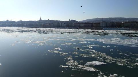 Ice flow on the Danube river 画像