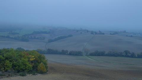 Very Dense Mist over Autumn Fields. Time Lapse ビデオ